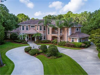 oldsmar fl real estate for sale
