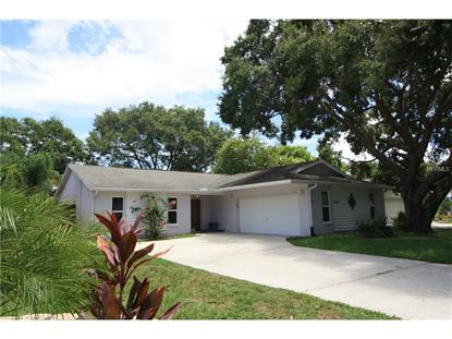 3116 COVENTRY EAST Safety Harbor, FL MLS# U7781475