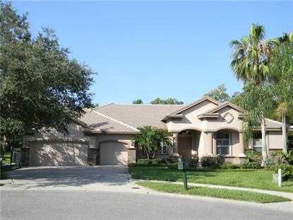 4 COPPERWOOD CT Safety Harbor, FL MLS# U7781805