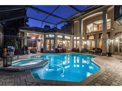 enclave at east lake woodlands fl real estate homes for