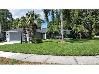3119 COVENTRY E Safety Harbor, FL MLS# U7789933