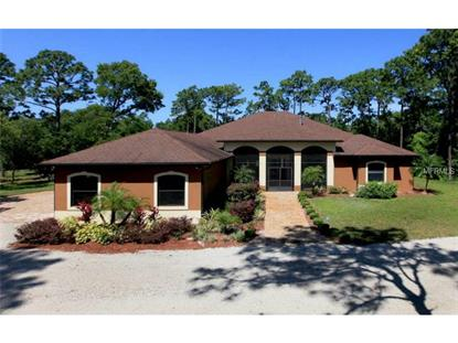 420 COLLINS ROAD Osteen, FL MLS# V4700448