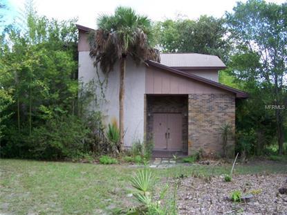 2120 WIGGLEY FARMS ROAD Deltona, FL MLS# V4702059