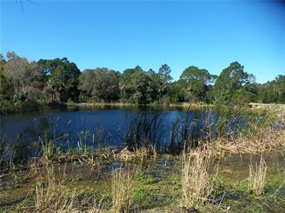 1500 MULLET LAKE PARK  RD Geneva, FL MLS# V4704148