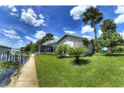 1177 LEMON BLUFF  RD Osteen, FL MLS# V4705100