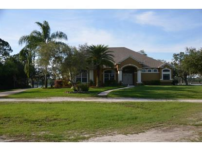 324 BLACK LAKE  RD Osteen, FL MLS# V4705726