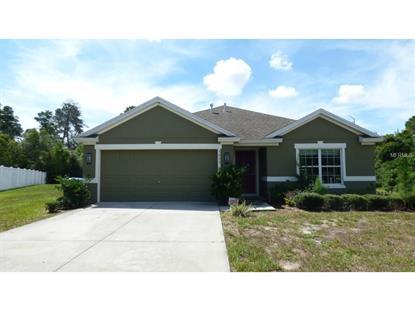 3053 BOXELDER  CT Deltona, FL MLS# V4705959