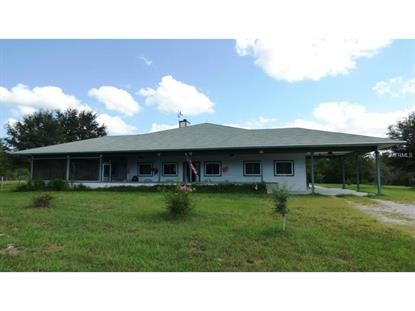 201 BLACK LAKE  RD Osteen, FL MLS# V4707197