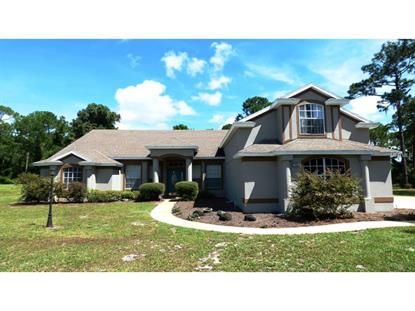 195 RABBIT  RUN Osteen, FL MLS# V4707621