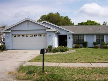 13316 BRIGHAM LN, Hudson, FL