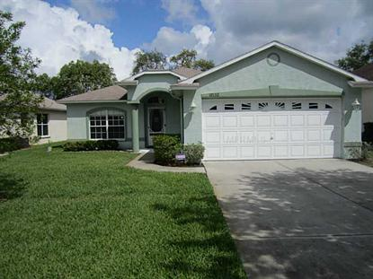 12132 LOBLOLLY PINE DR, New Port Richey, FL