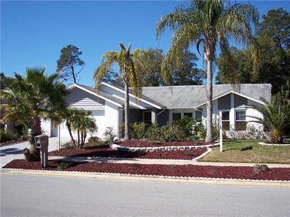 10150 BRIAR CIRCLE Hudson, FL MLS# W7536626