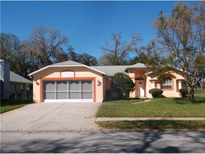 8017 HUTCHINSON DR, New Port Richey, FL