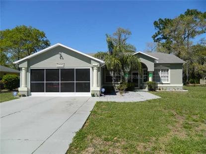 8421 DUNNELLON ROAD Weeki Wachee, FL MLS# W7537511