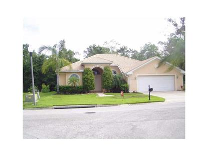 21055 LOS CABOS COURT Land O Lakes, FL MLS# W7539331