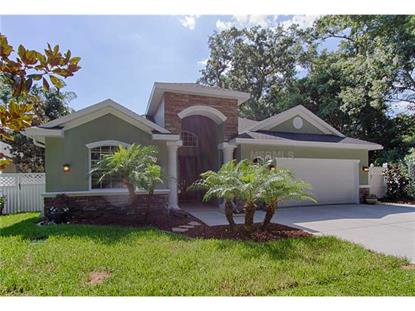 2460 RAJEL AVENUE Safety Harbor, FL MLS# W7539355