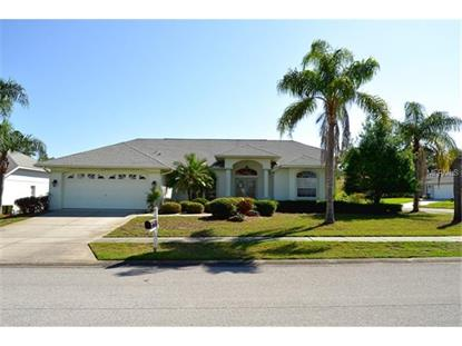 8222 CORAL CREEK LOOP Hudson, FL MLS# W7600059