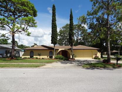 7800 SNAPPING TURTLE  CT Hudson, FL MLS# W7600395