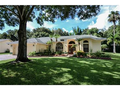 1011 CHILLUM COURT Safety Harbor, FL MLS# W7600747