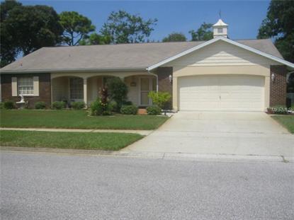13405 SHADBERRY LANE Bayonet Point, FL MLS# W7601406