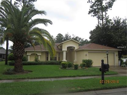 18423 GRAND CLUB DRIVE Hudson, FL MLS# W7601533