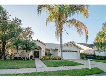 1115 ARCHERS BEND Safety Harbor, FL MLS# W7603128