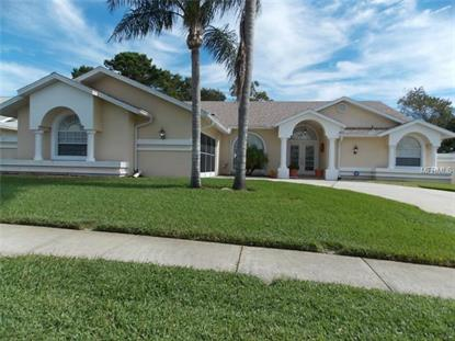 13718 CONWAY COURT Bayonet Point, FL MLS# W7603138