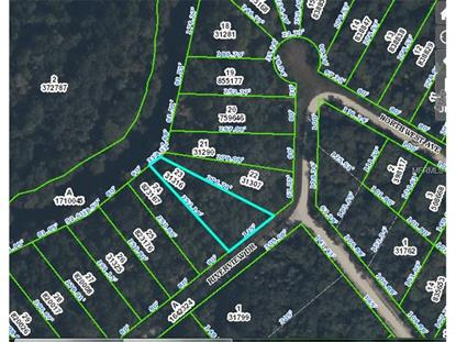 Riverview Dr, Webster, FL 33597