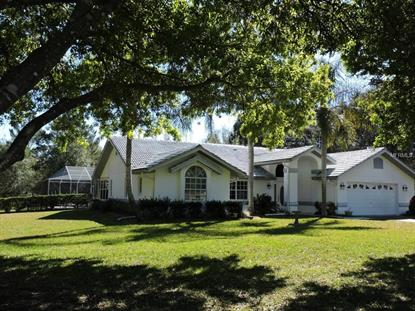 5208 WELLIG  AVE Brooksville, FL MLS# W7608693
