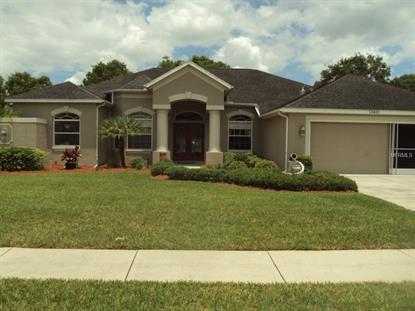 13441 Whitehaven Ct, Spring Hill, FL 34609