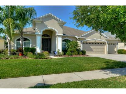 3319 MARBLE CREST  DR Land O Lakes, FL MLS# W7609523