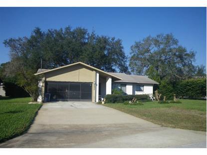 1379 ARBUCKLE  RD Spring Hill, FL MLS# W7610945