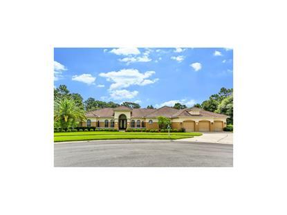 5498 FIRETHORN  PT Brooksville, FL MLS# W7611486