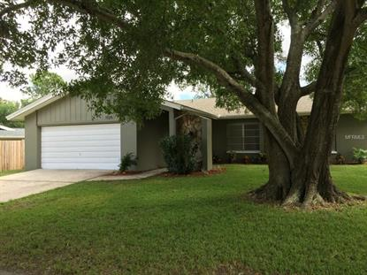 1125 PELICAN  PL Safety Harbor, FL MLS# W7613066