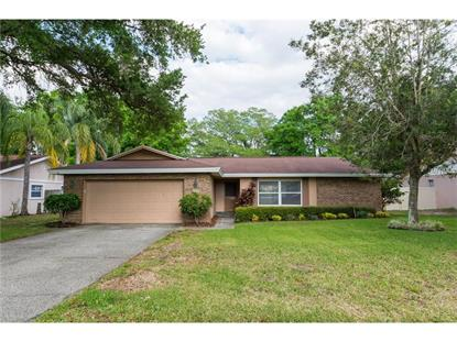 109 KENDALE DR Safety Harbor, FL MLS# W7618716