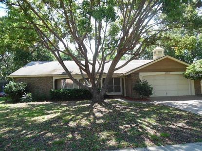 12700 STONE HOUSE LOOP Hudson, FL MLS# W7619218
