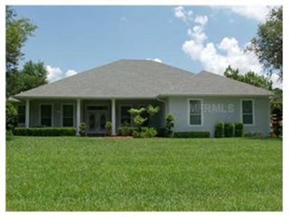 3559 PINE TREE LOOP Haines City, FL MLS# P4612268