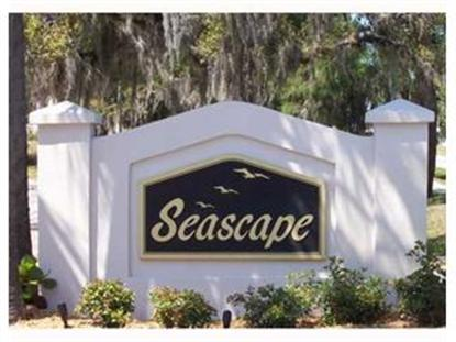 1713  SEASCAPE CIR  #106 Tarpon Springs, FL MLS# U7405644
