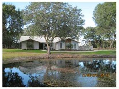 11603 INNFIELDS DR, Odessa, FL