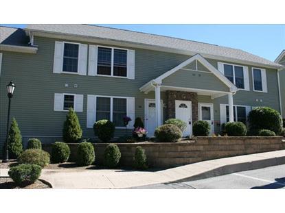 82 AVEONIS COURT Fishkill, NY MLS# 315113