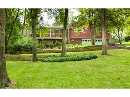 6 DEER RUN RD Poughkeepsie, NY MLS# 319523