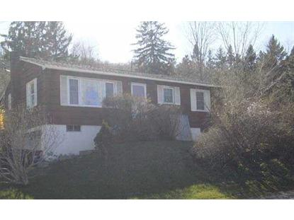 6047 ROUTE 22 Millerton, NY MLS# 327628