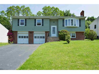 56 CARRIAGE HILL LN Poughkeepsie, NY MLS# 328624