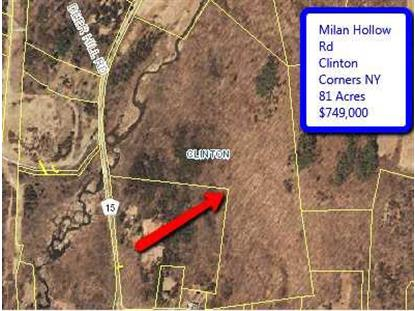 MILAN HOLLOW RD Clinton, NY MLS# 329027