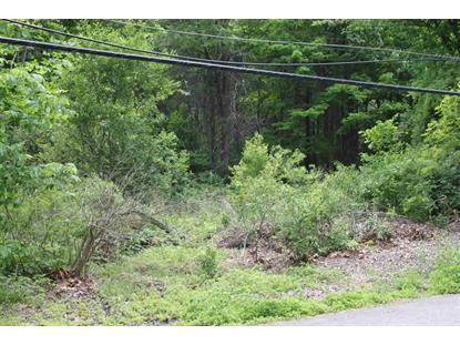 OLD GRANGE ROAD #3 Fishkill, NY MLS# 330168