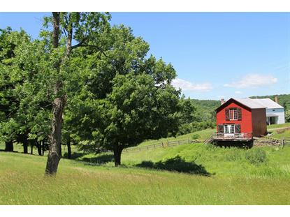 149 CREEK ROAD Clinton, NY MLS# 330296