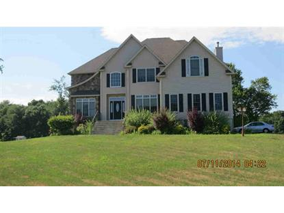 Real Estate for Sale, ListingId: 33064757, East Fishkill,NY12533