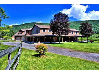17 SEYMOUR LN East Fishkill, NY MLS# 331124