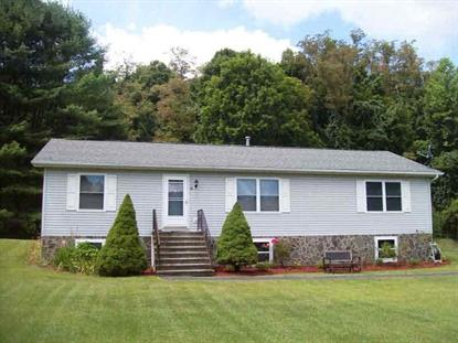 14 ORTON ACRES, Dover Plains, NY