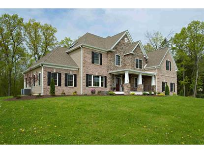 102 CATIES WAY East Fishkill, NY MLS# 333455